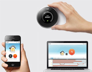 Nest WiFi access